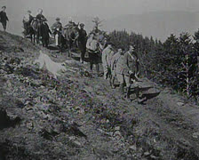 World War 1 - Convoy with horses Stock Footage
