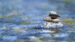 Zen stones. Stock Footage