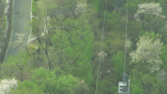 Stock Video Footage of Cable car over beautiful Japanese cherry blossom