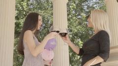 Beautiful women having fun while drinking wine. Stock Footage