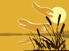 Reeds at sunset Stock Illustration