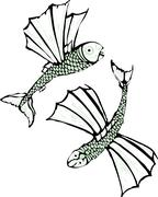 Two flying fish Stock Illustration