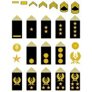 Insignia of the iranian army Stock Illustration