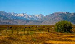 a view of mountain ranch in westen usa - stock photo