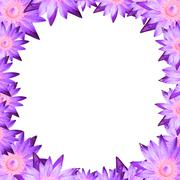 square frame lotus or water lily design on isolate background - stock photo