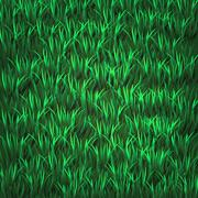 green grass - stock illustration