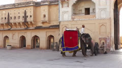 Elephant Leaving Amber Fort 02.mp4 Stock Footage