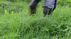 Gardener rubber waterproof boots shoes walk dew wet meadow grass Stock Footage