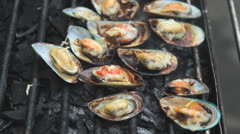 Shellfish Grill Stock Footage