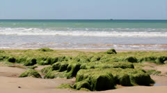 ALGARVE Praia St Eulalia F.mp4 Stock Footage
