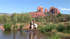 Horse plays in water in Oak Creek at Red Rock Crossing wide 3 in series Stock Footage