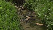 Serenity stream Stock Footage