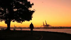 Morning Walk, Stanley Park, Seawall, Vancouver Stock Footage