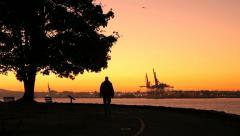 Morning Walk, Stanley Park, Seawall, Vancouver - stock footage