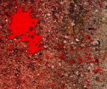 blood on grunge wall texture - stock illustration