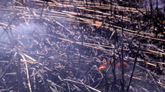 Ashes after a fire 1 Stock Footage