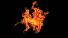 "Burning Chinese character ""qing"",fire love text. Stock Footage"