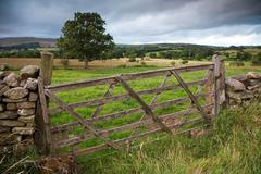 wooden farm gate, england - stock photo
