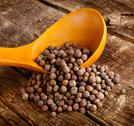 Stock Photo of allspice