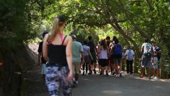 walking trail - stock footage