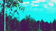 Vancouver view from Bowen Island zoom out Stock Footage