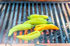cooking xcatic peppers - stock photo