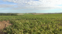 View across a field in the Somme, Picardy, France. Stock Footage