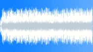 Stock Music of Hawaiian Luau