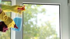 Window Washing Stock Footage