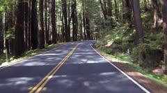 Kaunis ajaa läpi Kalifornian Redwood metsien POV 024 Arkistovideo