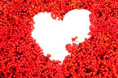 mountain ash berries with white heart-shaped copyspace - stock illustration