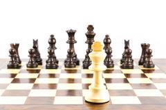 Chess challenge Stock Photos