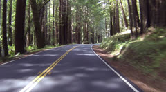 Beautiful drive through California Redwood forest POV part 2 024 Stock Footage