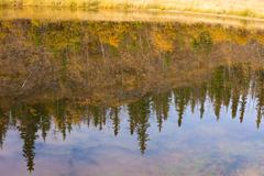 fall in yukon territory, canada, reflections on water surface - stock photo