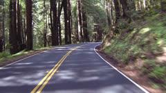 Ajo läpi Redwood Forest POV nopeasti timelapse HD 024 Arkistovideo