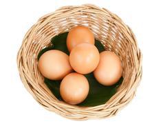 Egg isolated on white background Stock Photos