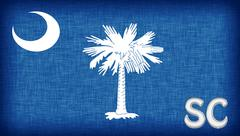 Linen flag of the us state of south carolina Stock Illustration