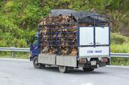 Stock Photo of hué, vietnam - aug 4: trailer filled with live dogs destined for vietnamese