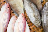 Stock Photo of close up of lovely fresh fish in a wet market
