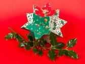 Stock Photo of butcher's broom and christmas decoration, isolated