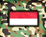Stock Illustration of amy camouflage uniform, indonesia