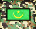 Stock Illustration of amy camouflage uniform, mauritania