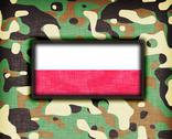 Stock Illustration of amy camouflage uniform, poland