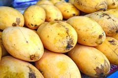 Thai Mango Stock Photos