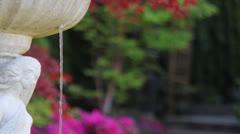 Frontyard Blooming Garden Spring Season with Water Fountain Stock Footage
