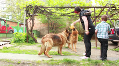 Shepherd with puppi - stock footage