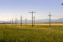 field in helena - stock photo