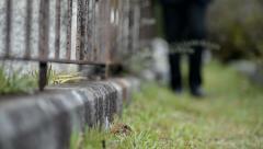 Elderly man walking through graveyard with flower Stock Footage