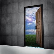 Old vintage door to new world. Stock Illustration