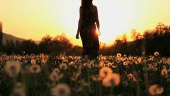 Beautiful Young Woman in a Hippy Dress Walking Throug Dandelion Field at Sunset Stock Footage